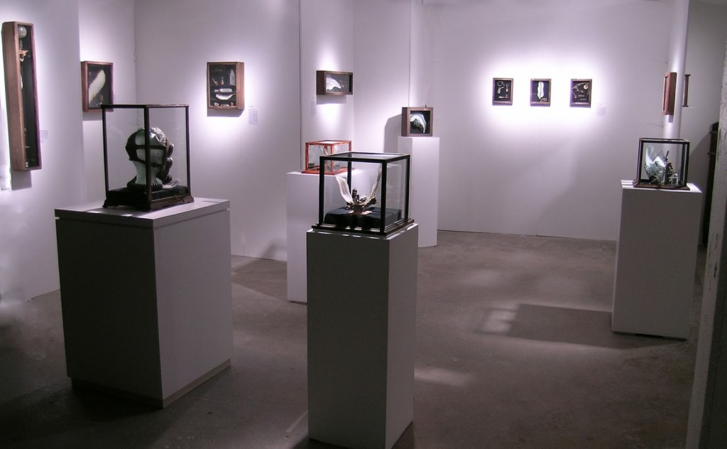 "Audrey Wilson's exhibit ""The Aberrant Collection of the Spurious Calamus"""