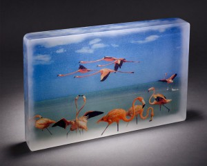"Lindy Ihrman, "" The Flock"";digital photography and kiln cast glass; 14½ x 10 x 2 inches"